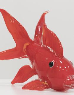 Pesce Rosso H26 L28