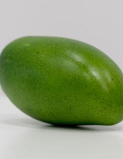 Mango verde H14X7X5,5
