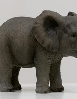 Elefante Poly H21